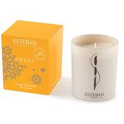 Bougie parfumée ambre - multicolore - maison - esteban paris parfums - tailles disponibles: taille unique