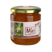 Destination miel de fleur d'oranger 500g miel bio